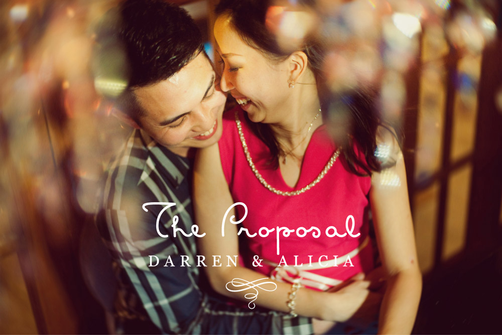 The Marriage Proposal // Darren + Alicia